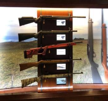 Pyramyd Air, Guns and Gunsmiths,